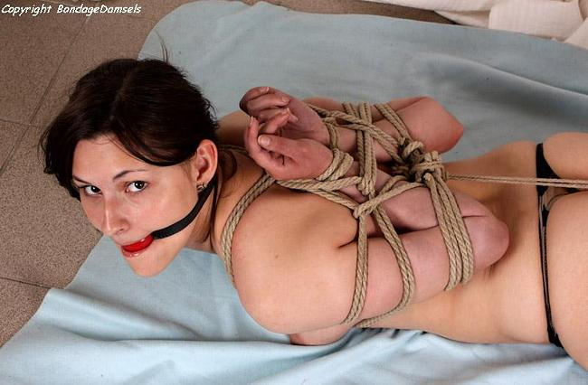 Tied up hairy pussy pictures