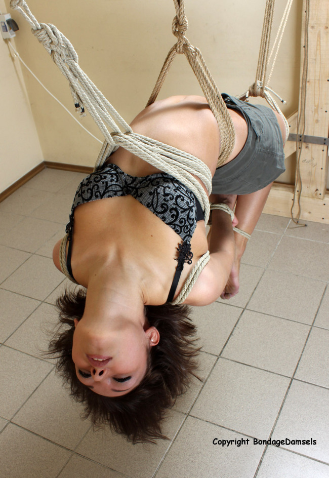 logg in bondage set