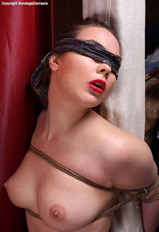 Blindfolded and Bound To The Post starring Harley